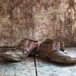 Stock Photo: Old shoes