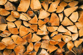 Biomass firewood — Stock Photo