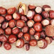 Chestnut pile - Stock Photo