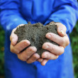 Soil in hands of agricultural worker — Stock Photo