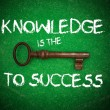 Stock Photo: Knowledge is the key to success