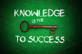 Knowledge is the key to success — Stock Photo