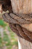 Schip touw en verweerde hout achtergrond — Stockfoto