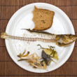 Fish leftovers - Stock Photo