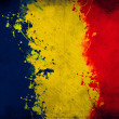 Romanian flag — Stock Photo #18523681