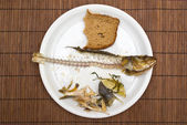 Fish leftovers — Stock Photo
