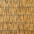 Cane roof texture — Stock Photo