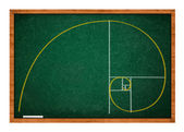 Golden ratio — Stock Photo