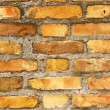 Brick wall — Stock Photo #23250820