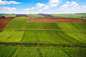 Arable land — Stockfoto