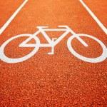Постер, плакат: Bicycle lane