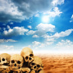 crânes humains dans le désert — Photo