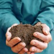 Soil in hands of agricultural worker - Stock Photo