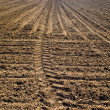 Plowed land - Stock Photo