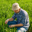 Man in wheat field — Stock Photo #24468627