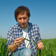 Man in wheat field — Stock Photo #24939593