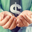 Dollar symbol in hands - Stock Photo