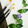 Paint brushes, flower and white paper - Stock Photo