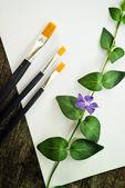 štětce, květin a dokument white paper — Stock fotografie