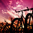 Bicycle silhouettes — Stock Photo