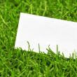Business card in grass — Stock Photo