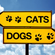 Cats or dogs, opposite signs — Stock Photo #27005747