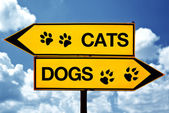 Cats or dogs, opposite signs — Stock Photo