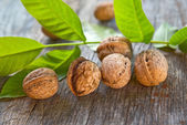 Walnuts on table — Stock Photo