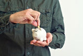 Piggy coin bank — Stock Photo