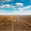 Plowed land — Stock Photo #29466675