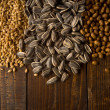 Grains — Stock Photo #30352355