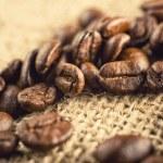 Coffee beans — Stock Photo #30401231