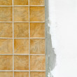 Ceramic tiles — Stock Photo #31118649
