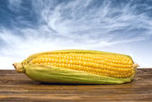 Ear of corn on wooden table — Foto Stock