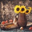 Autumn still life — Stock fotografie