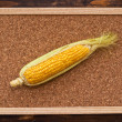 Ear of corn on bulletin board — Stock Photo