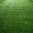 Artificial turf at soccer field — Stock Photo