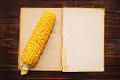 Espiga de milho e livro aberto — Foto Stock