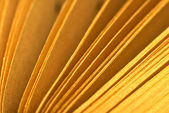 Book pages macro — Stock Photo