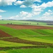 Arable land — Stock Photo