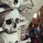 crânes humains — Photo #33525737