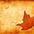 Autumn maple leaf on grunge old paper — Stock Photo