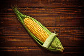 Ear of corn opening — Foto Stock