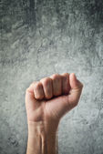 Raised fist for protest — Stock Photo