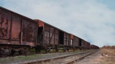 Old train with cargo containers — Stock Video