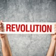 Stock Photo: Mholding white banner with revolution title