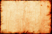 Old Beech wood texture — Stock Photo