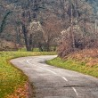 Winding road curves through autumn trees. — Stock Photo #41082717