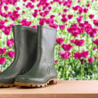 Rubber boots in flower garden — Stock Photo