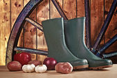 Rubber boots and various vegetable — Stock Photo